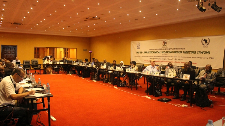 AFRA TECHNICAL WORKING GROUP MEETING
